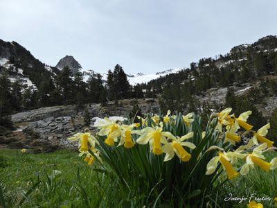 P1040879 - Romería en el Aneto, vistas desde Aigualluts, Pirineo.