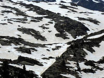 P1040927 - Otra vuelta por Maladetas Valle de Benasque (Pirineos)