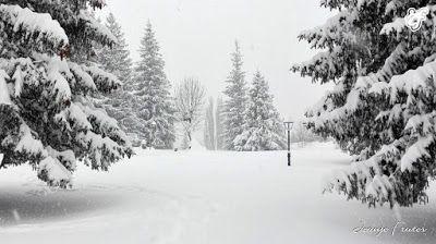 IMG 20170115 150819 001 - Ocho meses con esquís en el Valle de Benasque. Resumen.
