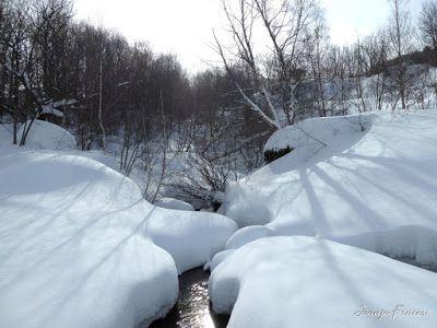 P1000603 - Ocho meses con esquís en el Valle de Benasque. Resumen.