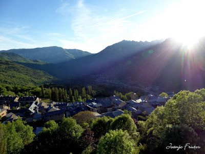 P1050002 - Botánico y Gorgues de Alba, Valle de Benasque (Pirineo)