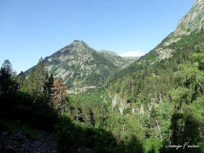 P1050736 - Botánico y Gorgues de Alba, Valle de Benasque (Pirineo)