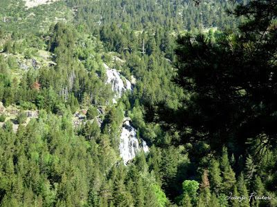 P1050743 - Botánico y Gorgues de Alba, Valle de Benasque (Pirineo)