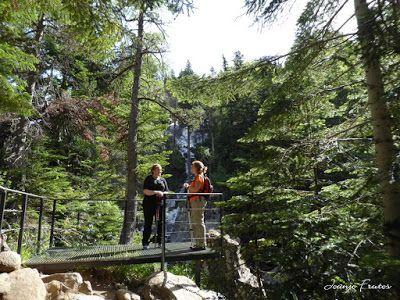 P1050817 - Botánico y Gorgues de Alba, Valle de Benasque (Pirineo)