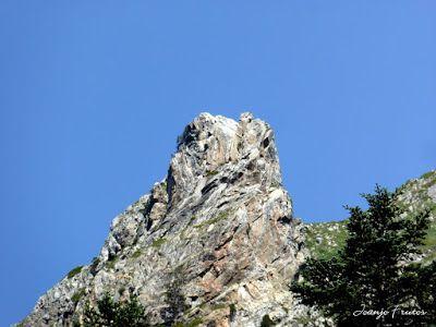 P1050876 - Botánico y Gorgues de Alba, Valle de Benasque (Pirineo)