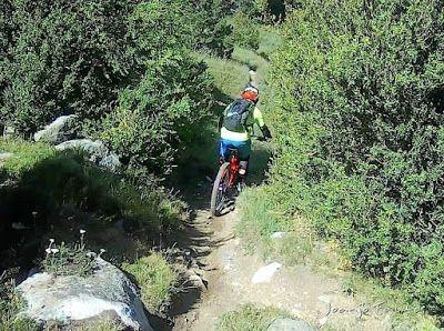 204 - Pllanadona un lujo de sendero en el Valle de Benasque.