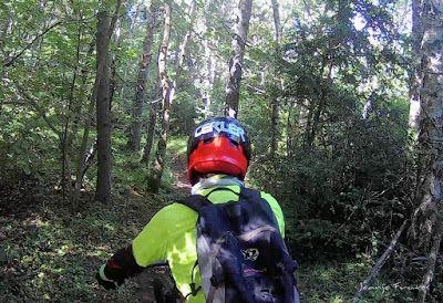 214 - Pllanadona un lujo de sendero en el Valle de Benasque.