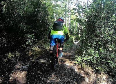 239 - Pllanadona un lujo de sendero en el Valle de Benasque.