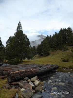 """P1080472 - Del """"veroño"""" a ver nieve de nuevo en el Valle de Benasque."""