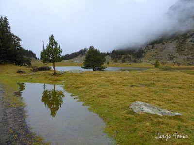 """P1080475 - Del """"veroño"""" a ver nieve de nuevo en el Valle de Benasque."""