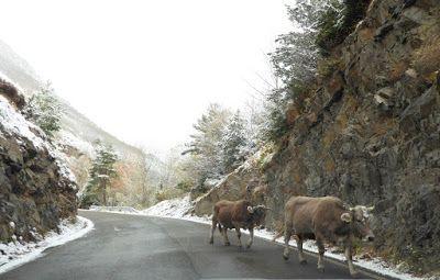 P1090083 - Vistas y carreteras del fondo del Valle de Benasque.