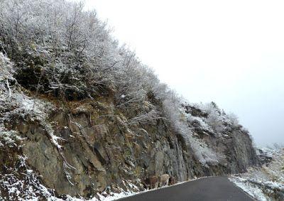 P1090084 - Vistas y carreteras del fondo del Valle de Benasque.
