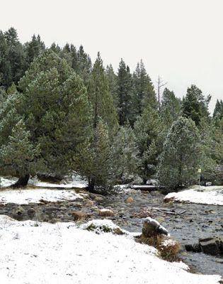 Panorama1 4 - Noviembre en el Valle de Benasque dos ambientes...