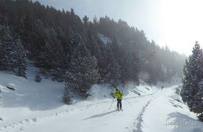 P1090709 - Diciembre empieza blanco en el Valle de Benasque.