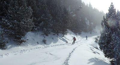 P1090712 - Diciembre empieza blanco en el Valle de Benasque.