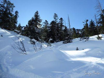 P1090801 - Otro día de skimo por el Valle de Benasque