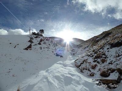 P1090946 - Esperando la ansiada nevada en el Valle de Benasque.