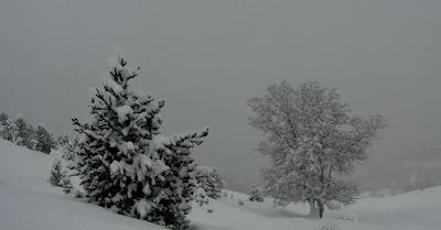 Capturadepantalla2018 02 05ala28s2916.59.47 - Primer lunes de febrero en Cerler, Valle de Benasque