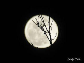 P1100724 - Cambio de mes con Luna Azul.