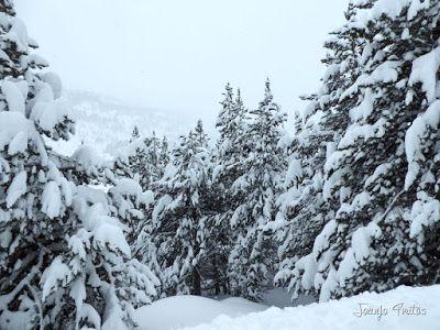 P1110252 - Visitando los 3 m de nieve del Refugio de La Renclusa, Valle de Benasque.