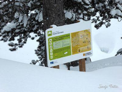 P1110290 - Visitando los 3 m de nieve del Refugio de La Renclusa, Valle de Benasque.