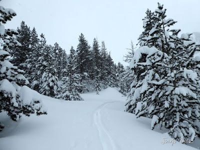 P1110291 - Visitando los 3 m de nieve del Refugio de La Renclusa, Valle de Benasque.