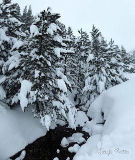 Panorama4 - Visitando los 3 m de nieve del Refugio de La Renclusa, Valle de Benasque.