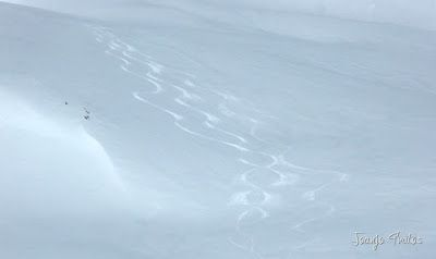 P1110857 - Cerler, Gallinero, Urmella, Arasán, se trata de esquiar ... Valle de Benasque.