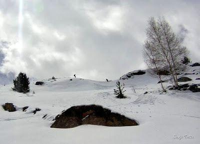 Capturadepantalla2018 04 30ala28s2916.50.16 - Gallinero skimo, se acabó abril con nueva nevada.