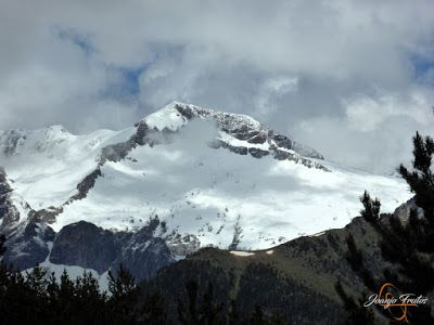 P1140455 - Sol, pedales y nevada de junio