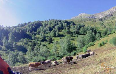 Capturadepantalla2018 08 14alas22.42.08 - Rabaltueras-Gallinero Puro Enduro btt, Valle de Benasque.