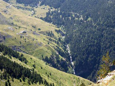 P1160675 - De buitres ... Sierra Negra.