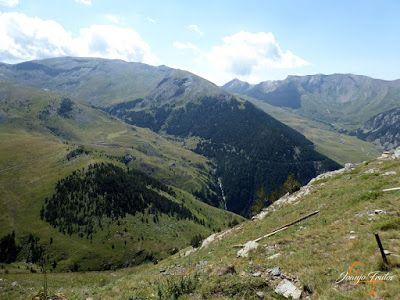 P1160689 - De buitres ... Sierra Negra.