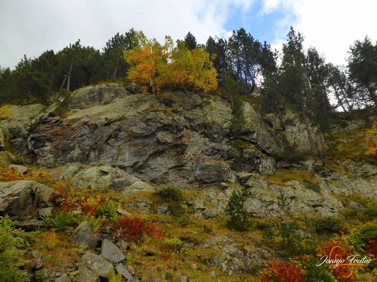 P1190798 - Empezamos con colores de otoño, Valle de Benasque.