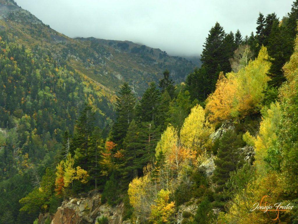 P1190804 1024x768 - Empezamos con colores de otoño, Valle de Benasque.