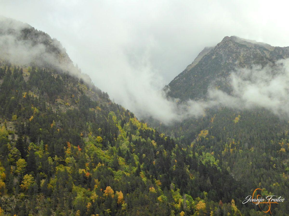P1190817 - Empezamos con colores de otoño, Valle de Benasque.