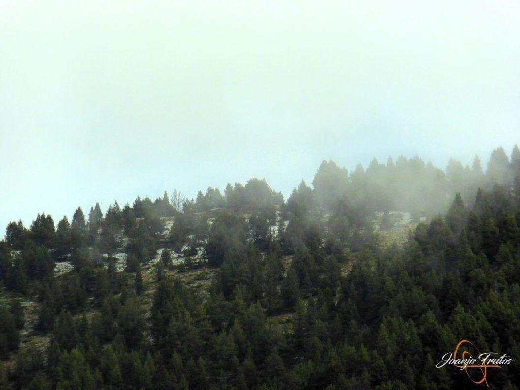 P1190843 1024x768 - Y Leslie deja nieve en Cerler, Valle de Benasque.
