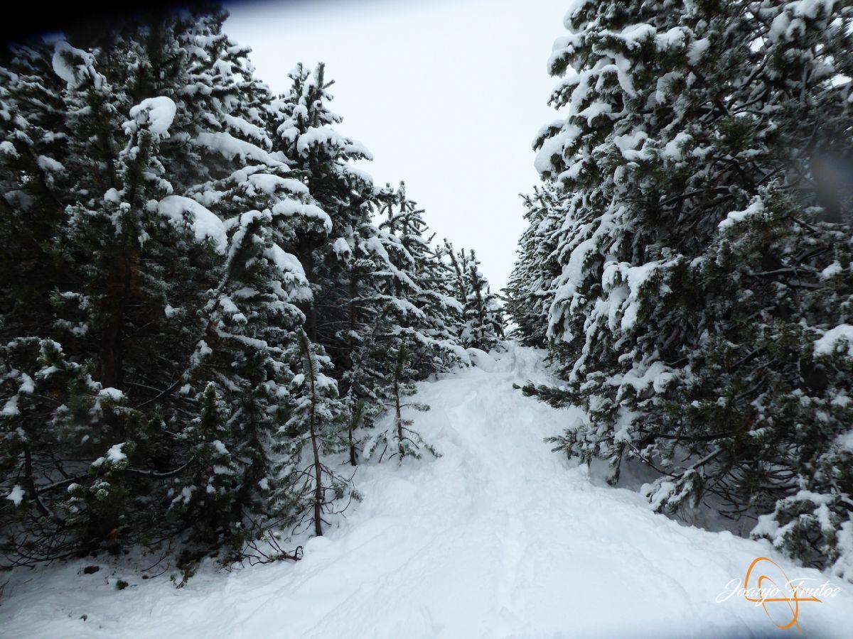P1200242 - Octubre esquiando en Cerler.