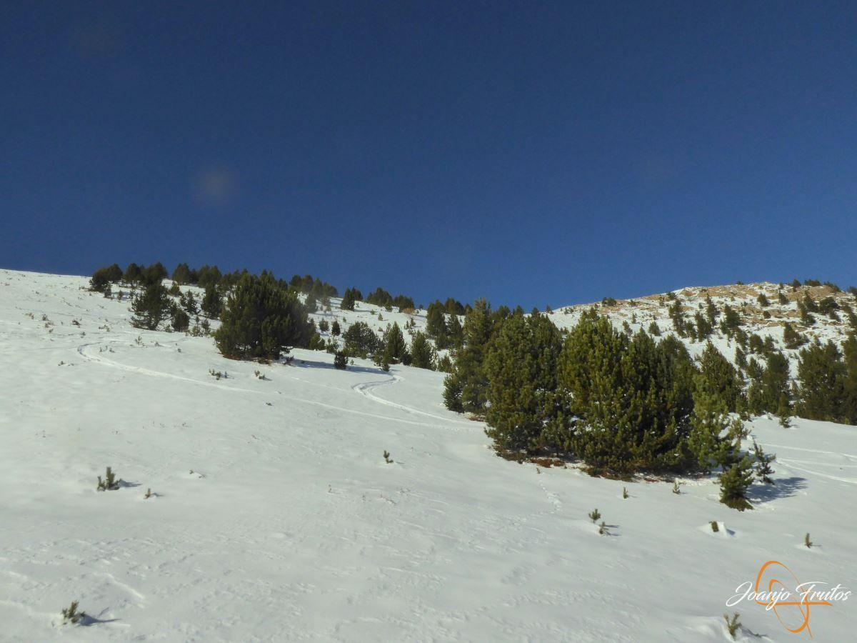 P1200575 - Cuarta esquiada en Cerler, aún con nieve polvo.