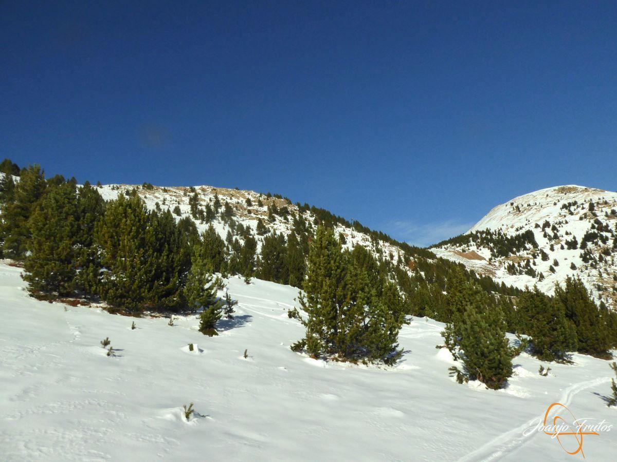 P1200576 - Cuarta esquiada en Cerler, aún con nieve polvo.