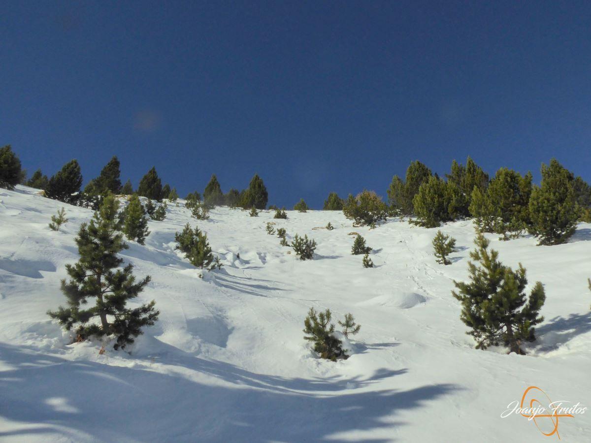 P1200580 - Cuarta esquiada en Cerler, aún con nieve polvo.
