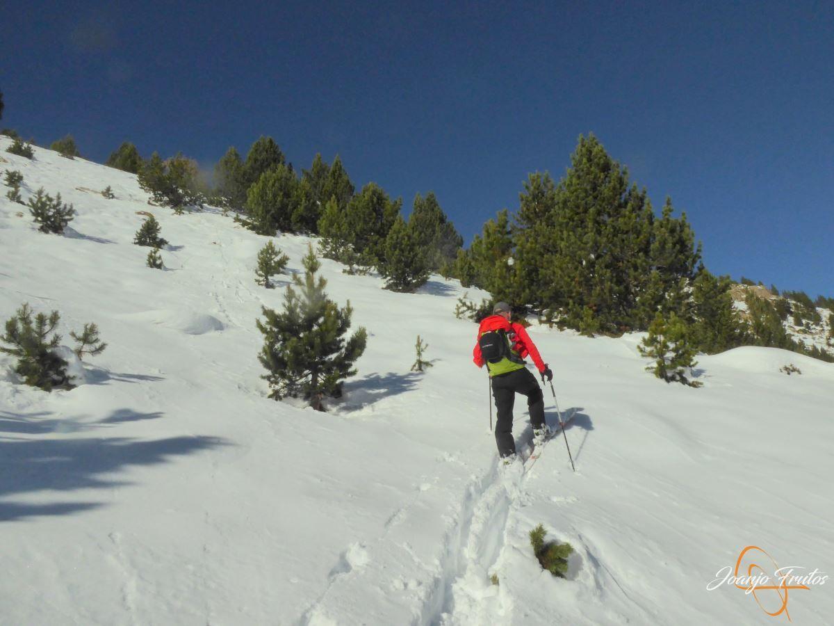 P1200584 - Cuarta esquiada en Cerler, aún con nieve polvo.