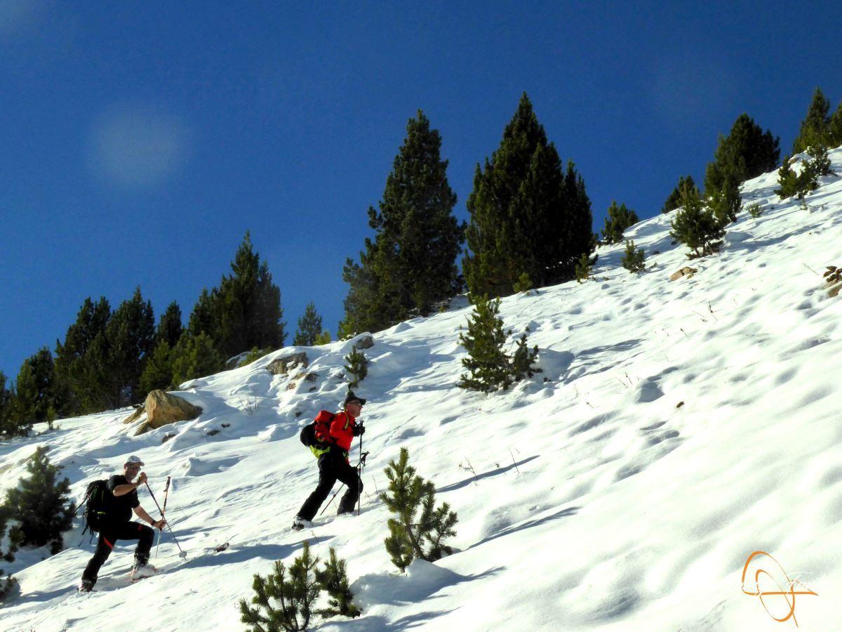 P1200589 - Cuarta esquiada en Cerler, aún con nieve polvo.