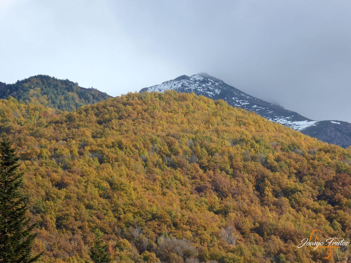 P1200994 - Veroño cerca de Castejón de Sos - Liri.