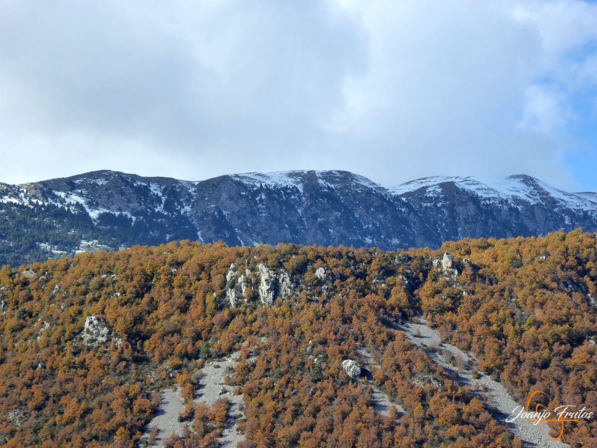 P1200997 - Veroño cerca de Castejón de Sos - Liri.