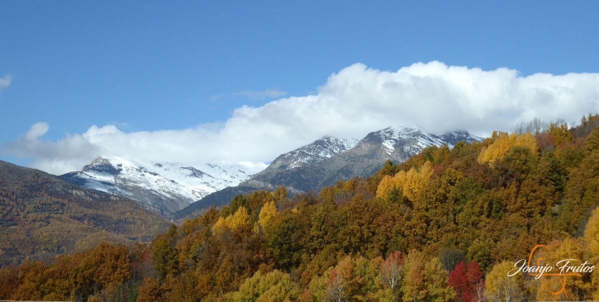 P1210005 - Veroño cerca de Castejón de Sos - Liri.