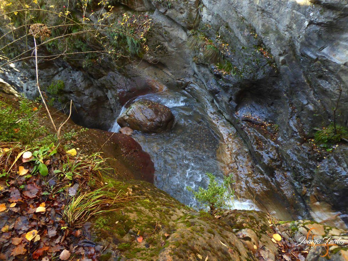 P1210027 - Veroño cerca de Castejón de Sos - Liri.