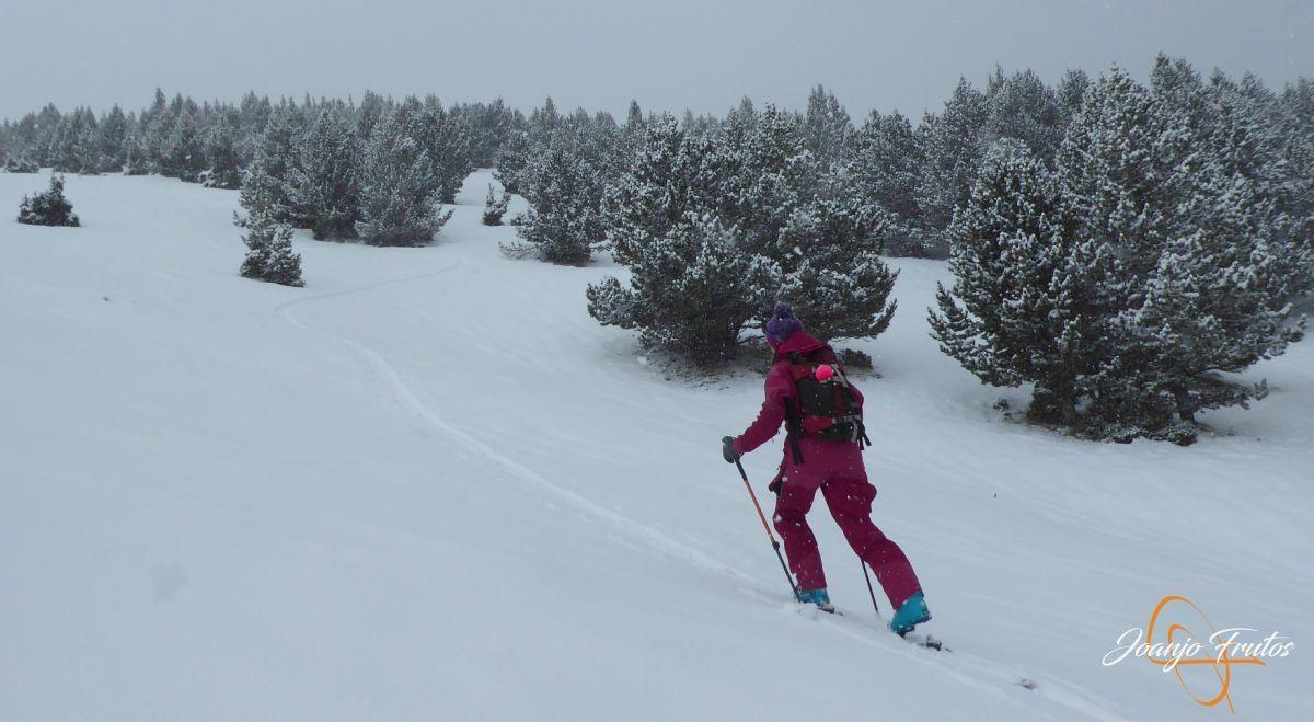 P1210179 - Décima esquiada y nueva nevada en Cerler.