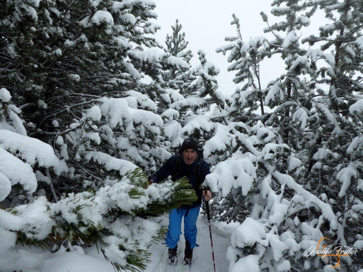 P1210427 - Rabosa ski & friends NOV18