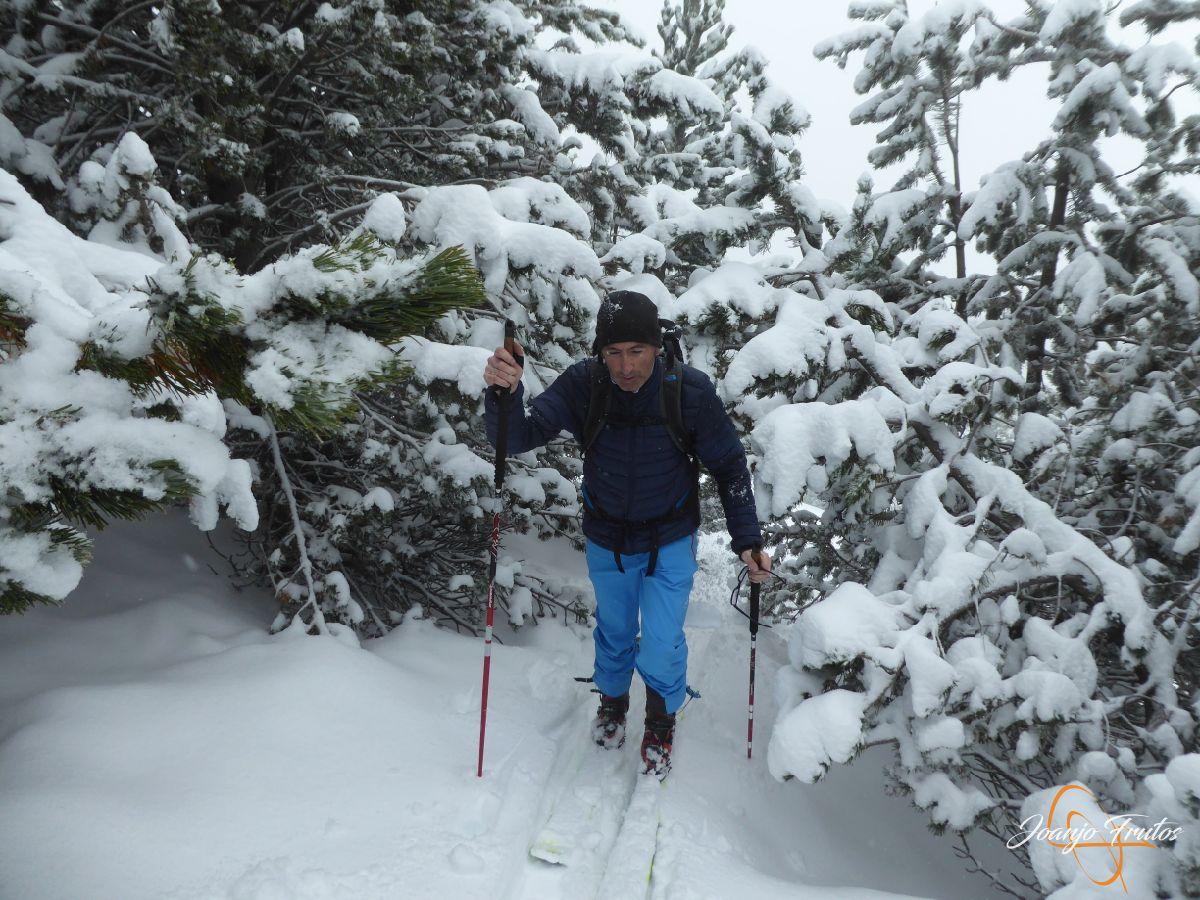 P1210428 - Rabosa ski & friends NOV18